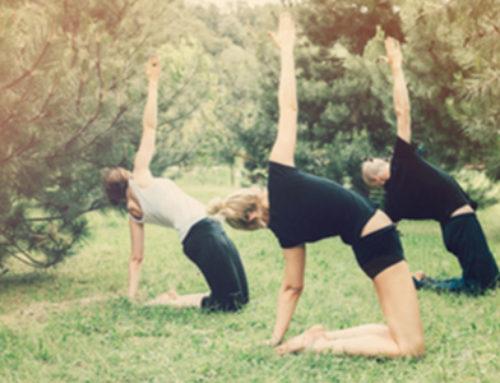 Free Fort Collins Yoga